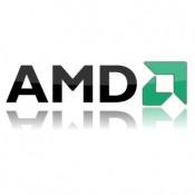 AMD (19)