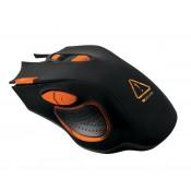 Canyon Mouse (6)